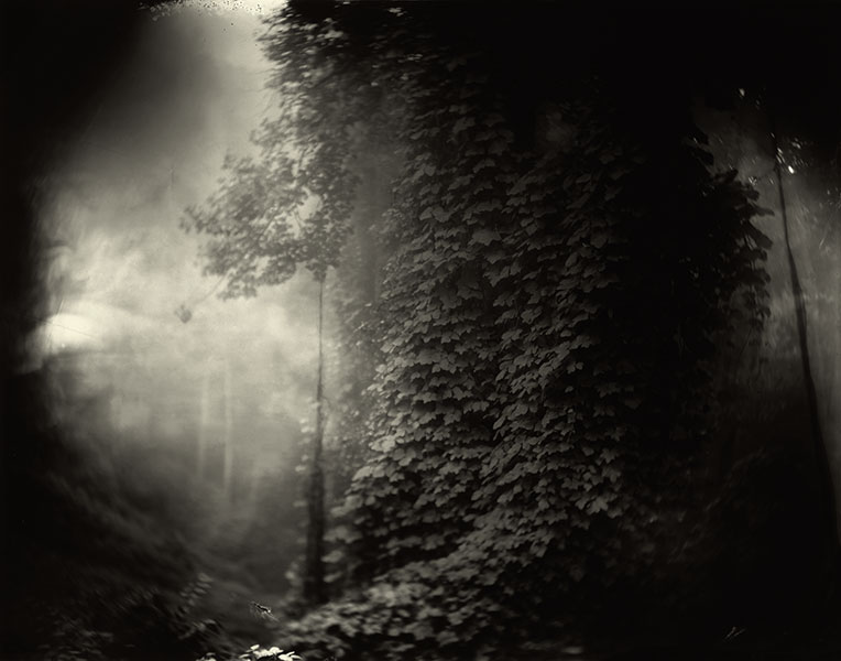 Sally_Mann_Georgia_03.jpg