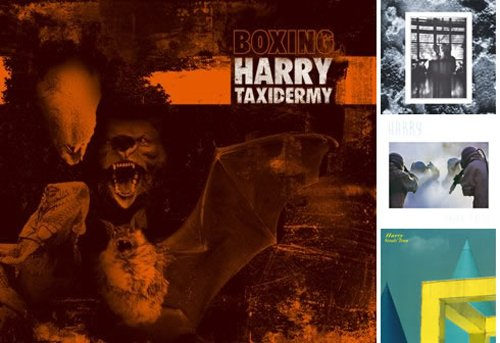 Taxidermy - Boxing Harry.jpg