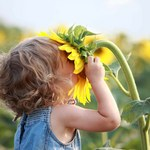 Fotolia girl_smelling_sunflower.jpg