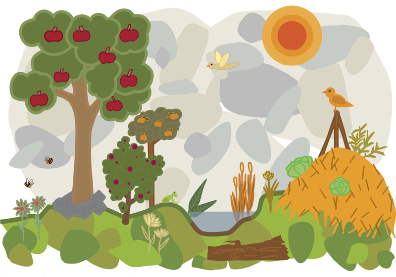 permaculture-with-trees-and-bees-and-vegetables-and-birds.jpg