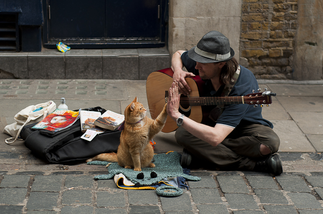 http://lounge.obviousmag.org/monologos_dialogos_e_discussoes/james-gato-londres-2.jpg