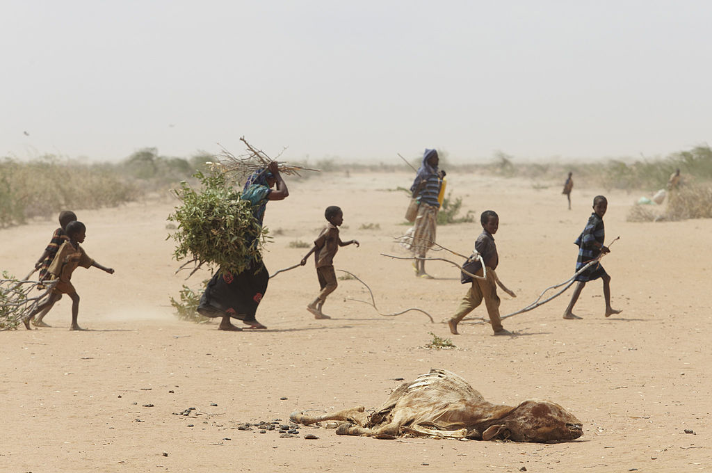 http://lounge.obviousmag.org/o_som_do_silencio/2014/10/16/1024px-Oxfam_East_Africa_-_A_family_gathers_sticks_and_branches_for_firewood.jpg