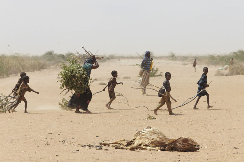1024px-Oxfam_East_Africa_-_A_family_gathers_sticks_and_branches_for_firewood.jpg