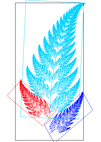 Fractal_fern_explained.png