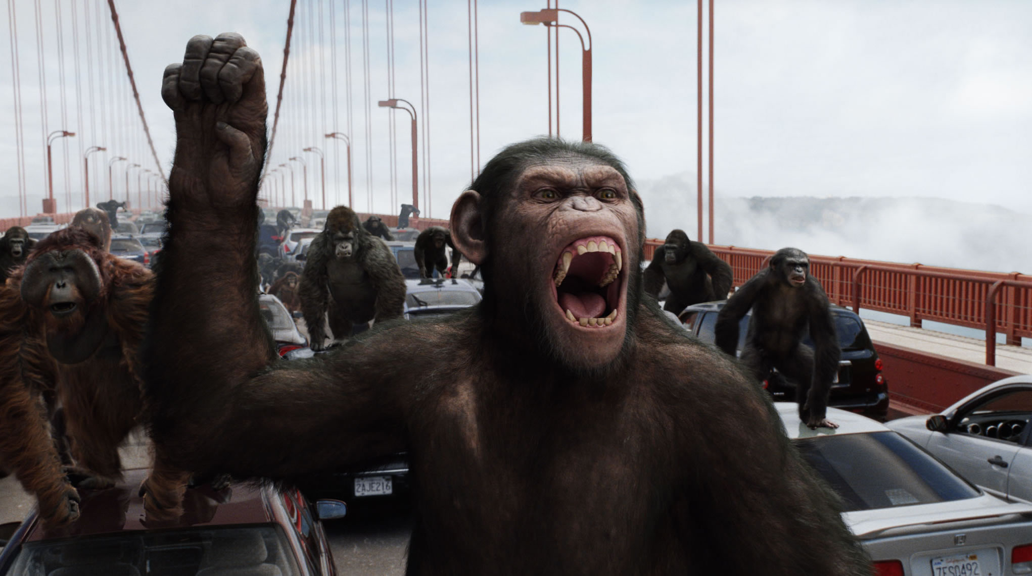 rise-of-the-planet-of-the-apes-movie-image-031.jpg