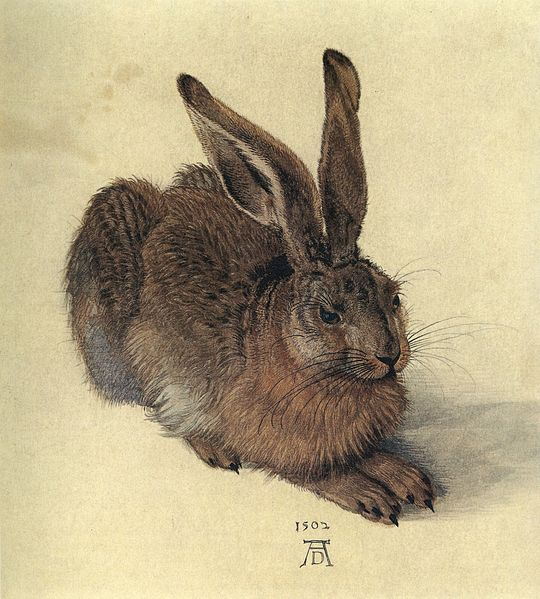 durer2.jpg