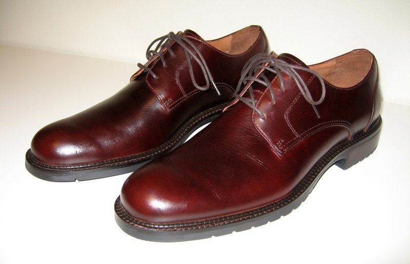 Mens_brown_derby_leather_shoes.jpg