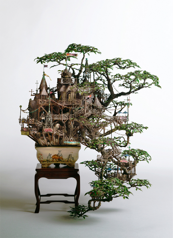 2_Aiba_Bonsai-B_view11.jpg