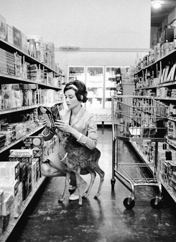 Audrey Hepburn and her pet deer.jpg