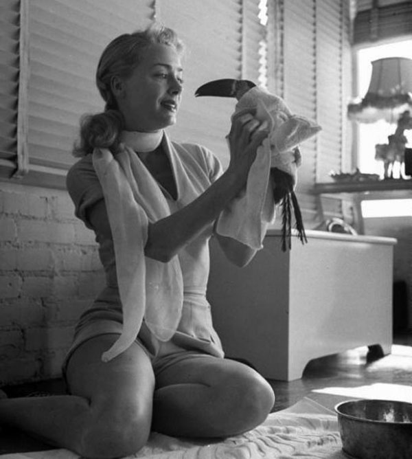 June Havoc with her pet toucan, 1950.jpg