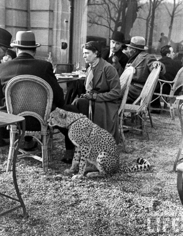 Parisian woman with cheetah, 1932.jpg
