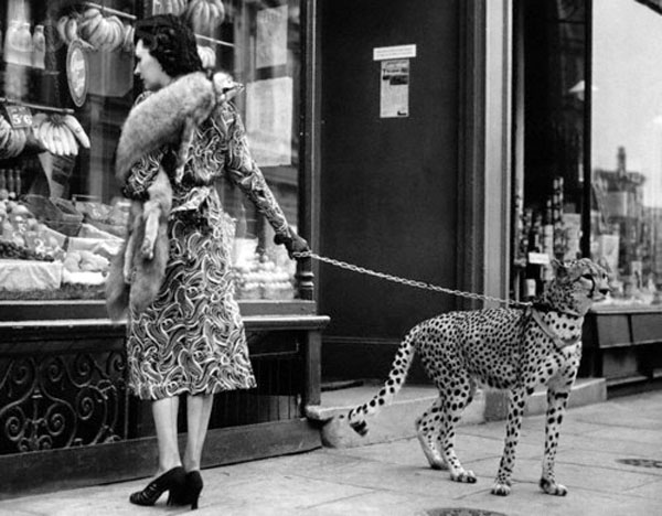 Phyllis Gordon and her pet Cheetah, 1939.jpg