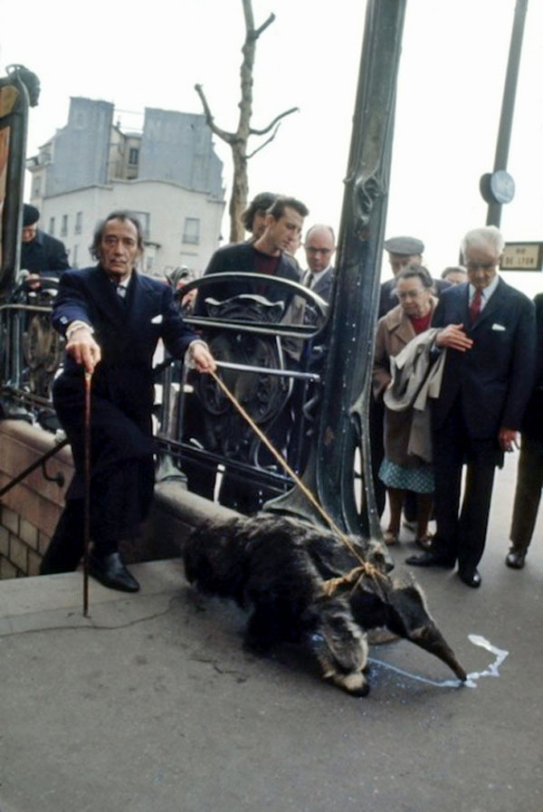 Salvador Dali and his pet anteater, 1969.jpeg