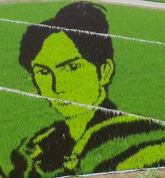 boy-rice-art.jpg