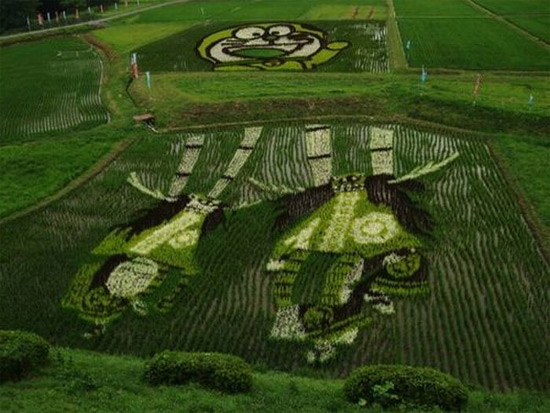 cool-rice-art.jpg