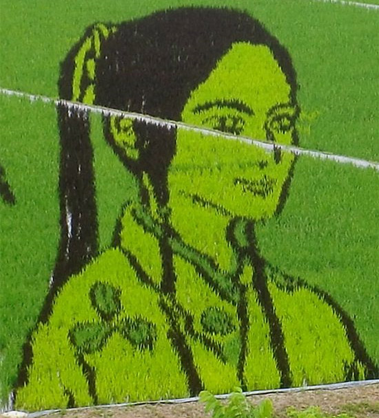 girl-rice-art.jpg
