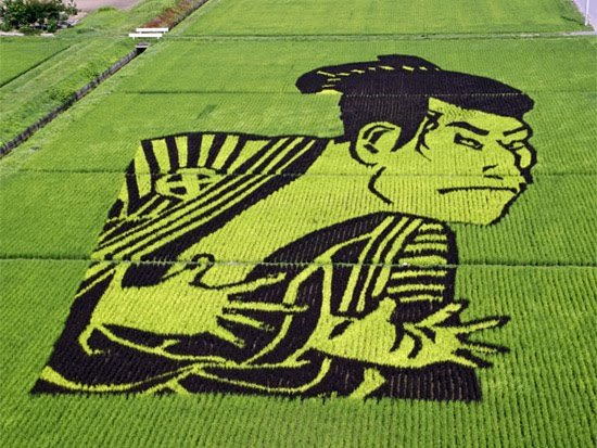 japanese-rice-art.jpg