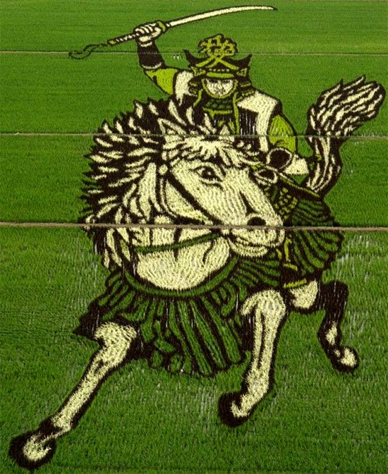 rice-art-samurai.jpg