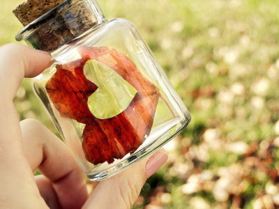 love,nature,fun,inspiring,nice,bottle-4bd5e53799e8843b8e0db3e0724d4b7f_h_large.jpg